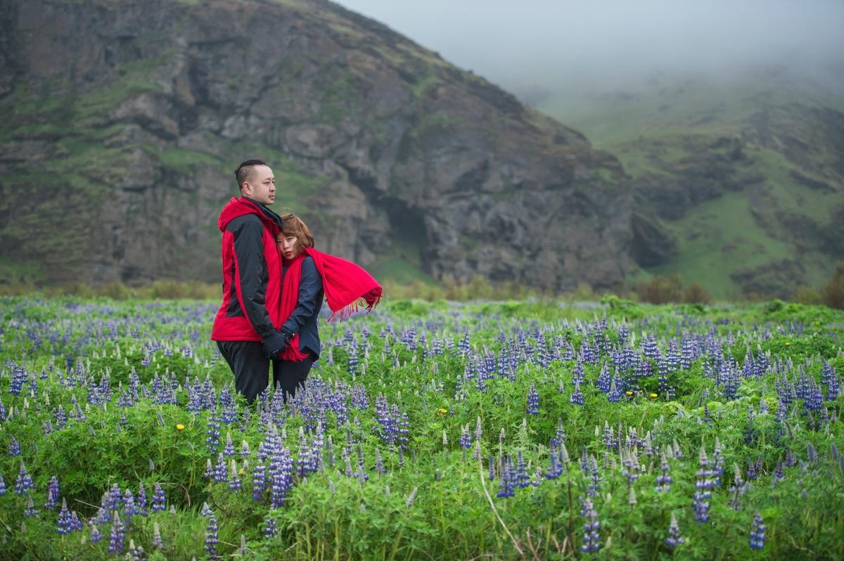 [iceland冰島海外婚紗]春季冰島-魯冰花的盛宴